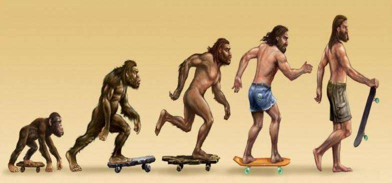 skate evolucion mono